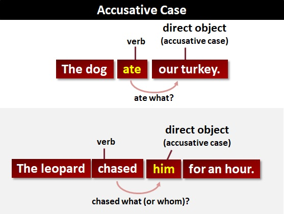 Accusative Case What Is The Accusative Case