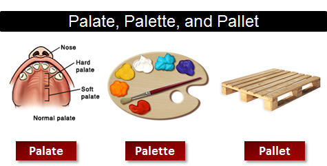 Image result for pallet vs palate